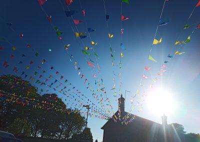 flags in sun